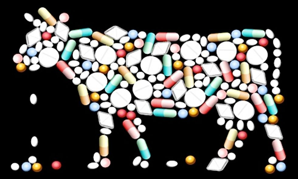 Newly Disclosed Documents Reveal Livestock Antibiotic Use by FDA Despite 'High Risk' to Humans