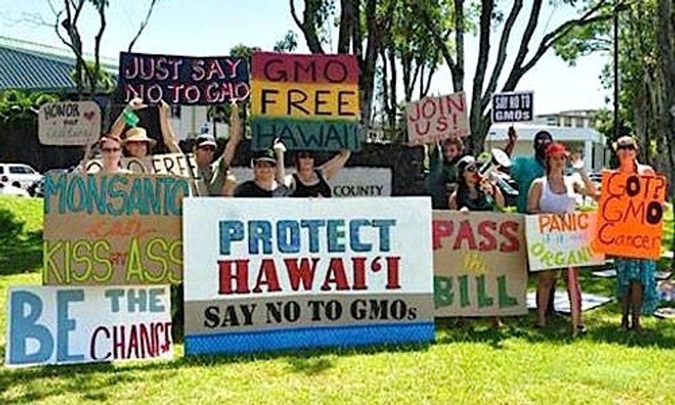 Another Victory Strengthens Local GE and Pesticide Bans in Hawaii
