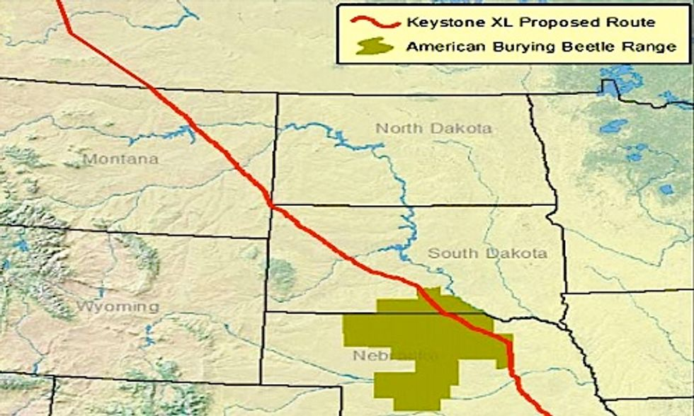 Senior Officials Accused of Skewing Science to Benefit Keystone XL Pipeline