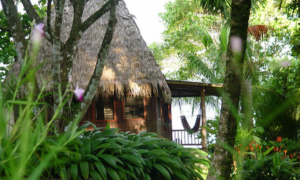 4 Romantic Rainforest Retreats