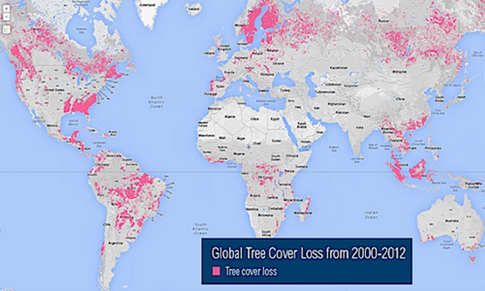 9 Maps That Analyze the World's Forests
