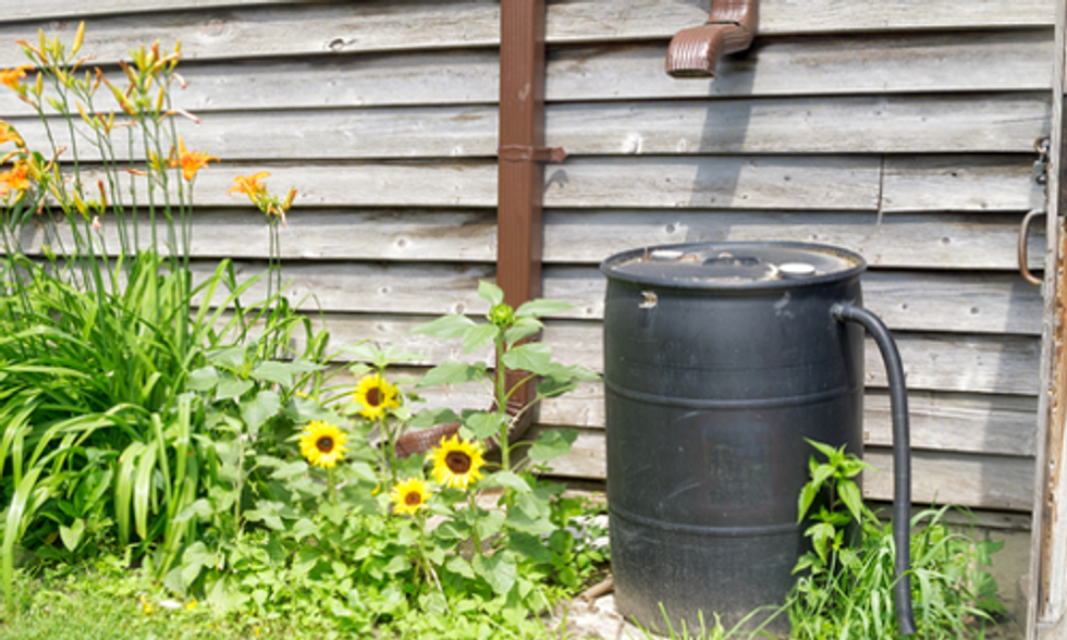 In Wake of Elk River Chemical Spill West Virginians Turn to Rainwater Harvesting