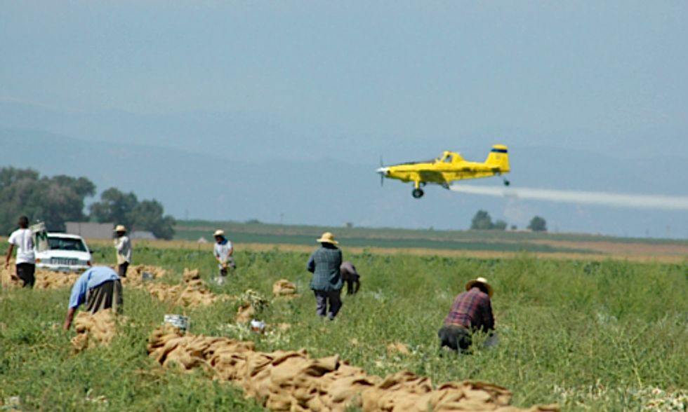 Long-Overdue EPA Pesticide Regulations Fail to Fully Protect Farmworkers