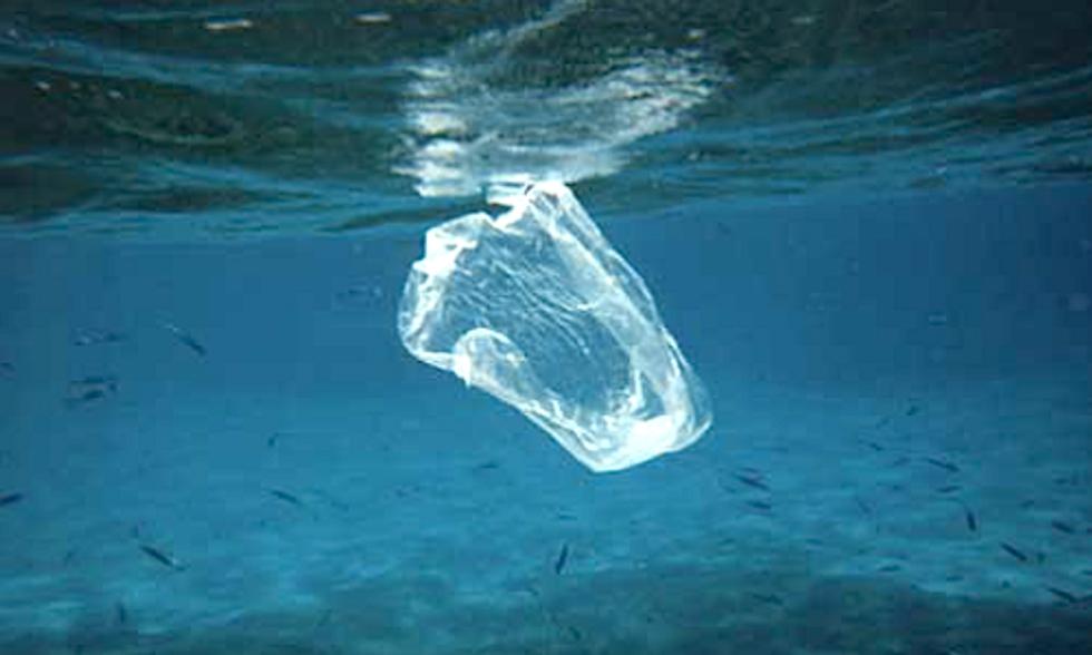 100th Plastic Bag Ban Passed in California
