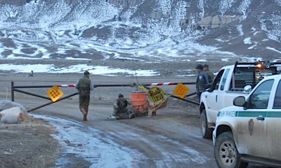 Man Risks Arrest Blocking Road That Leads Yellowstone Bison to Slaughter