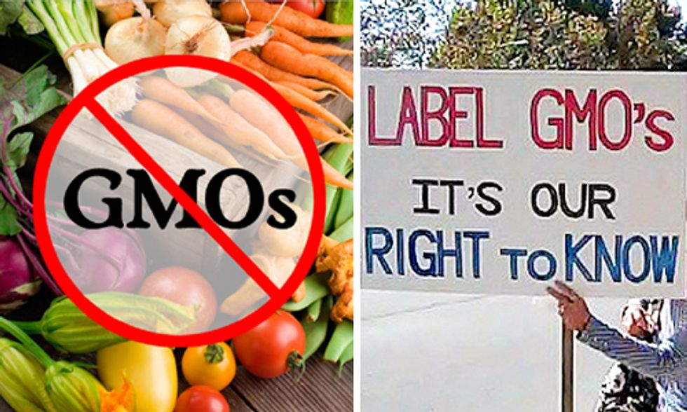 GMOs: Ban Them or Label Them?