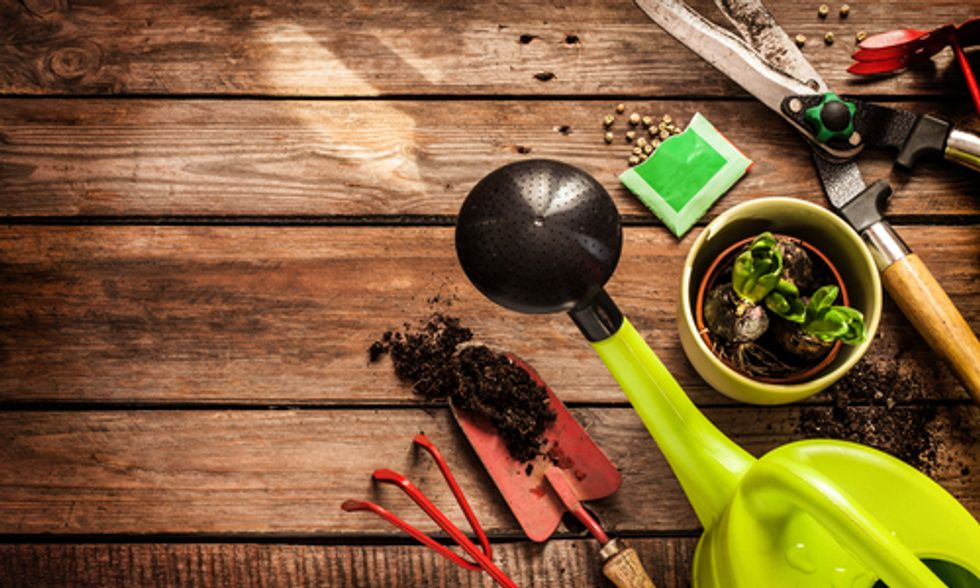 7 Tips to Prep for Gardening Season