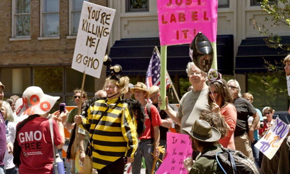 Colorado Supreme Court Overturns 'Big Food' Challenge, Keeps GMO Labeling Bill Alive