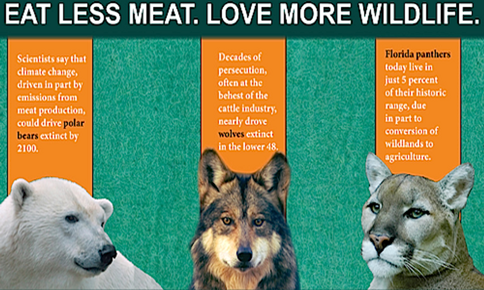 Earth-Friendly Diet Campaign Urges Americans to Eat Less Meat