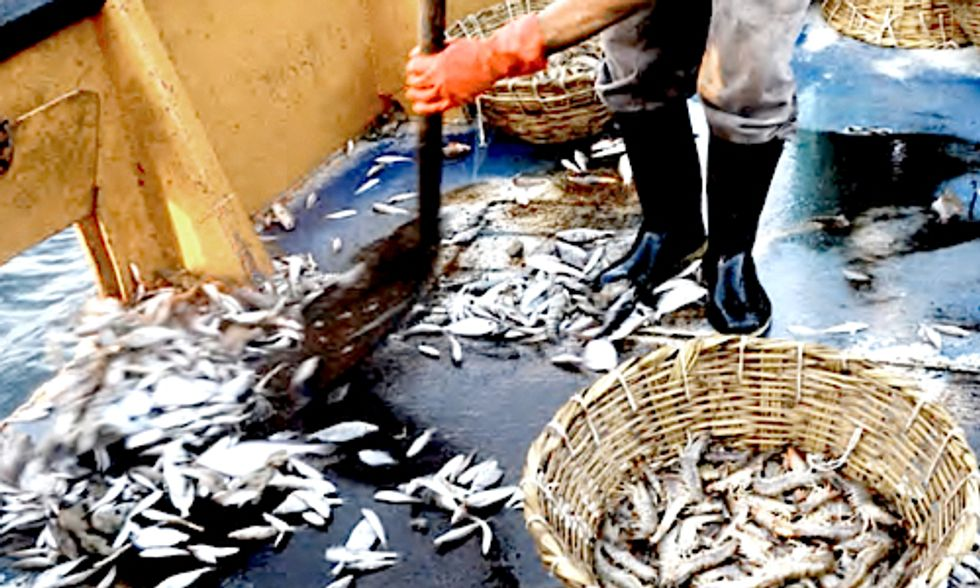 9 of the Dirtiest U.S. Fisheries Exposed