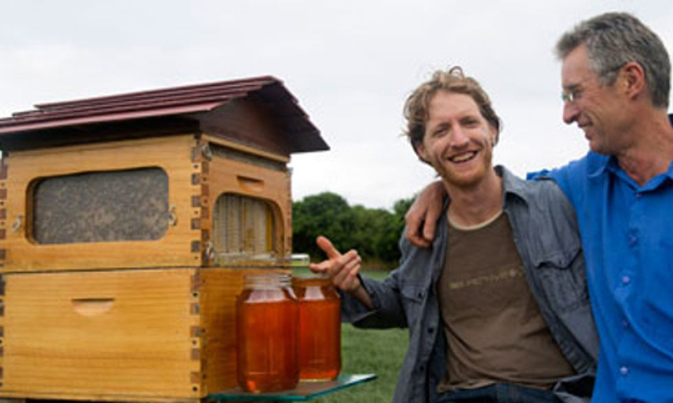 Revolutionary Honey Harvesting Beehive Crowdsources $2 Million in First Day