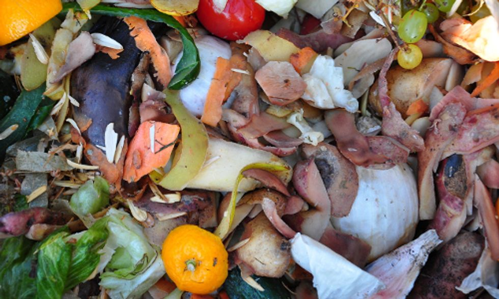 Reducing Food Waste Is Good for Economy and Climate, Report Says