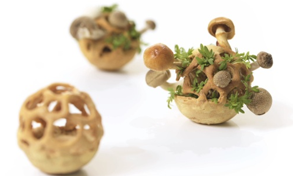 Will 3D Printing Be the Next Big Thing for Sustainable Food?