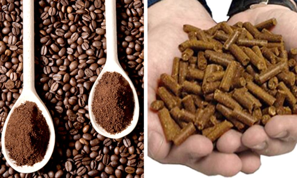 Innovative Startup Sells Coffee Grounds to Fuel Cars and Power Buildings