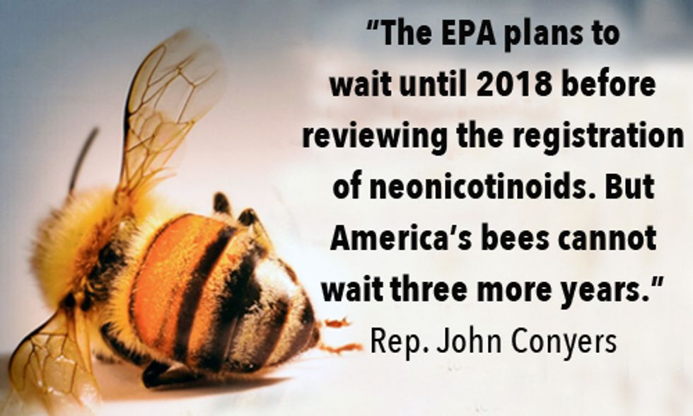 4 Million People Demand Obama Administration to Protect Bees from Toxic Insecticides