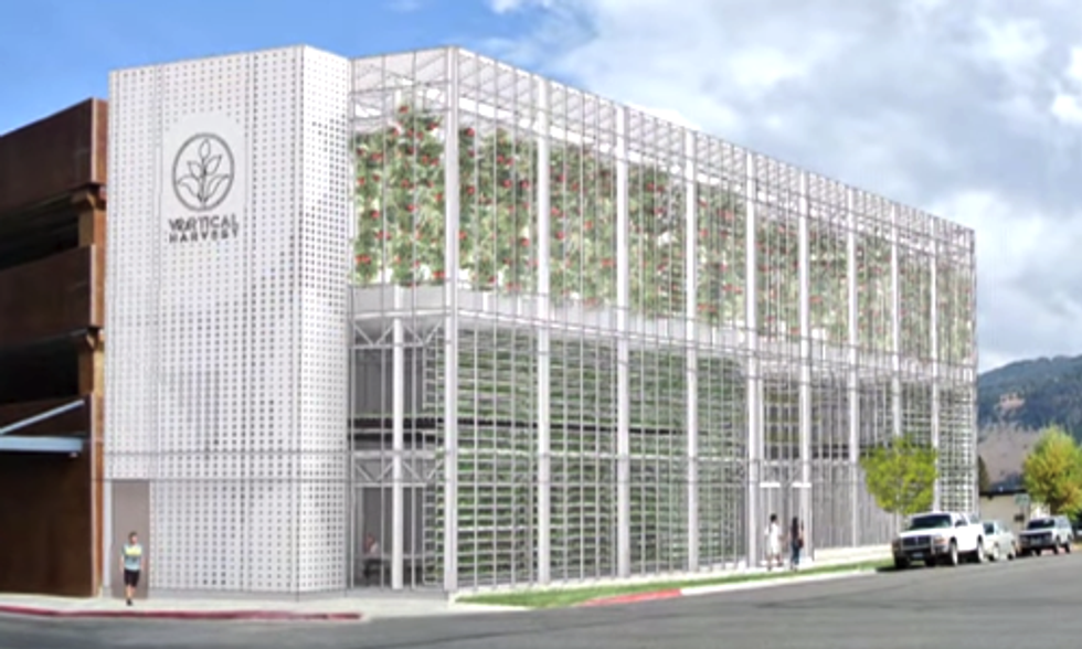 5 Ways Vertical Farms Are Changing the Way We Grow Food