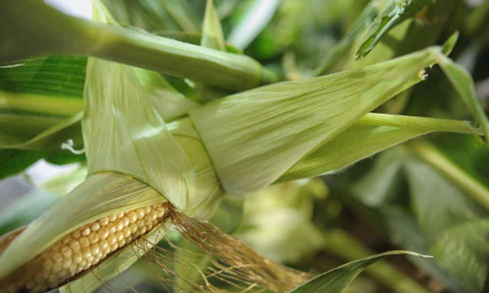 GMO Labeling: Nation's 'Biggest Food Fight' Hits DC