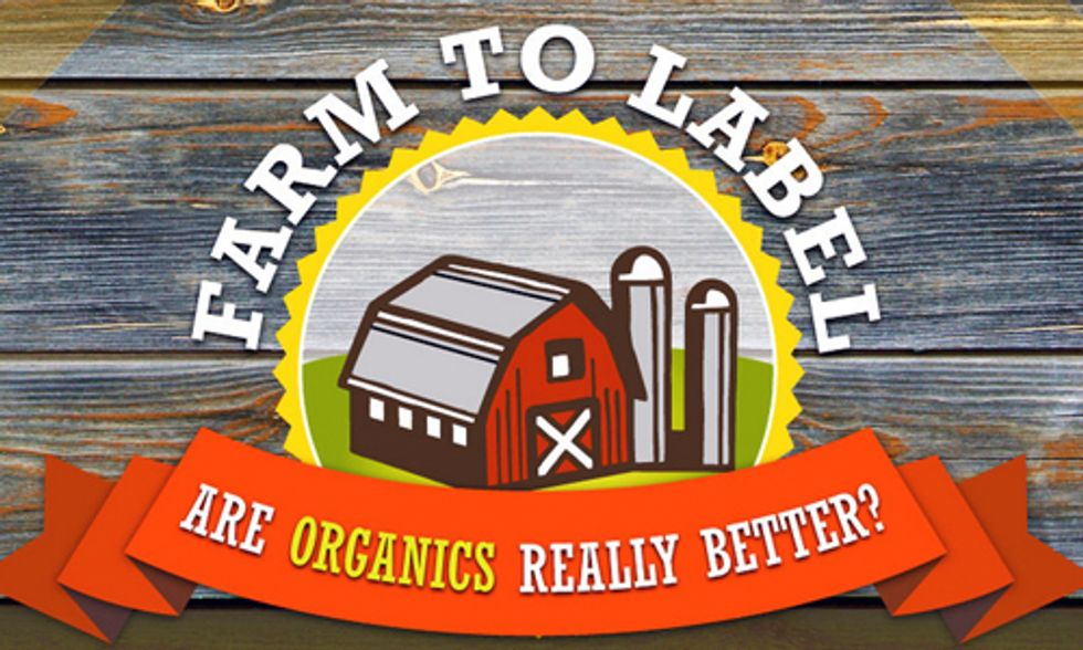 Why You Should Buy Organic Food for You and Your Family
