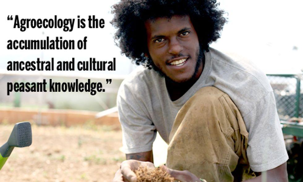 Agroecology: Revolutionizing the Way We Grow Food