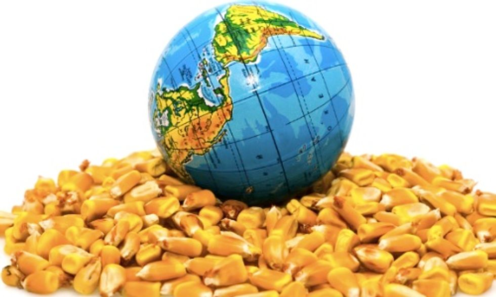GMOs Will Not Feed the World, New Report Concludes