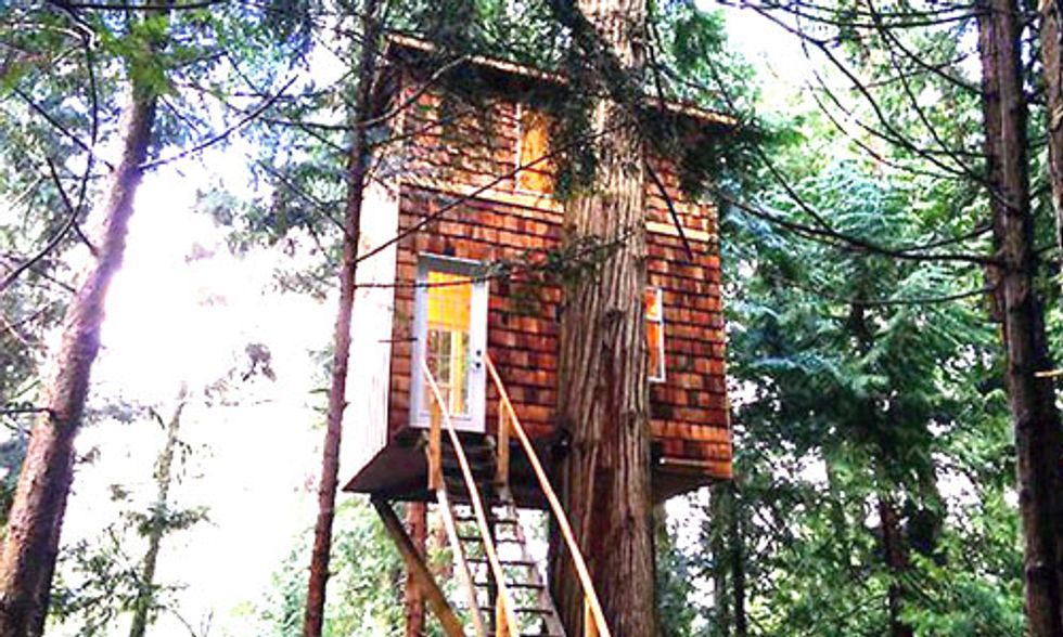 If You've Ever Wanted to Live in a Treehouse, You've Got to Check This Out