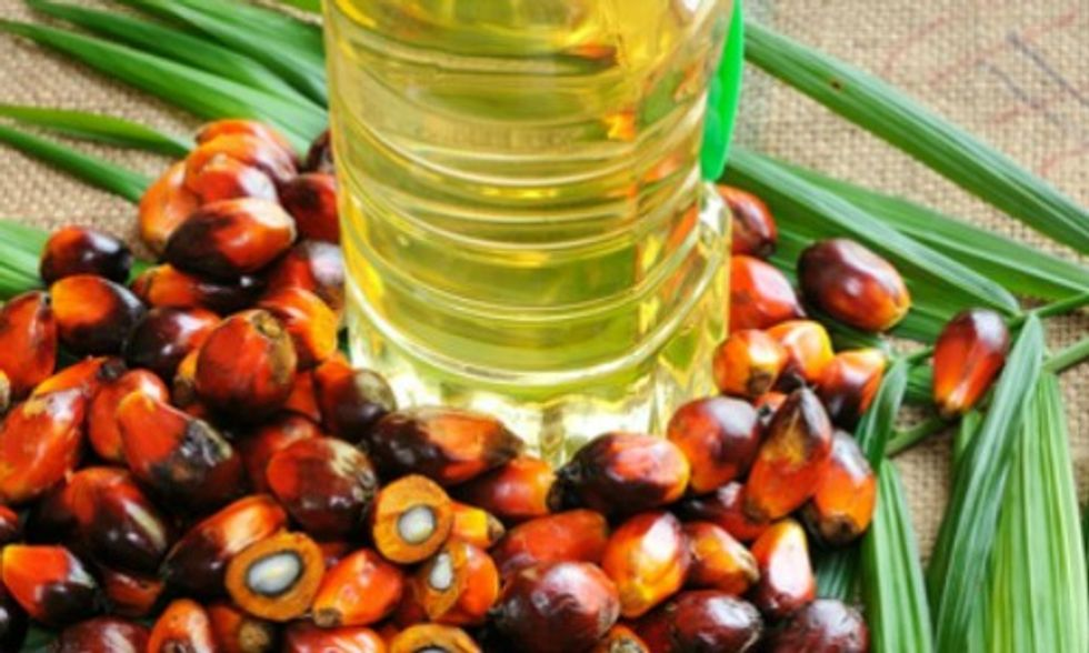 Find Out Which Companies Responsibly Source Palm Oil (You Might Be Surprised)
