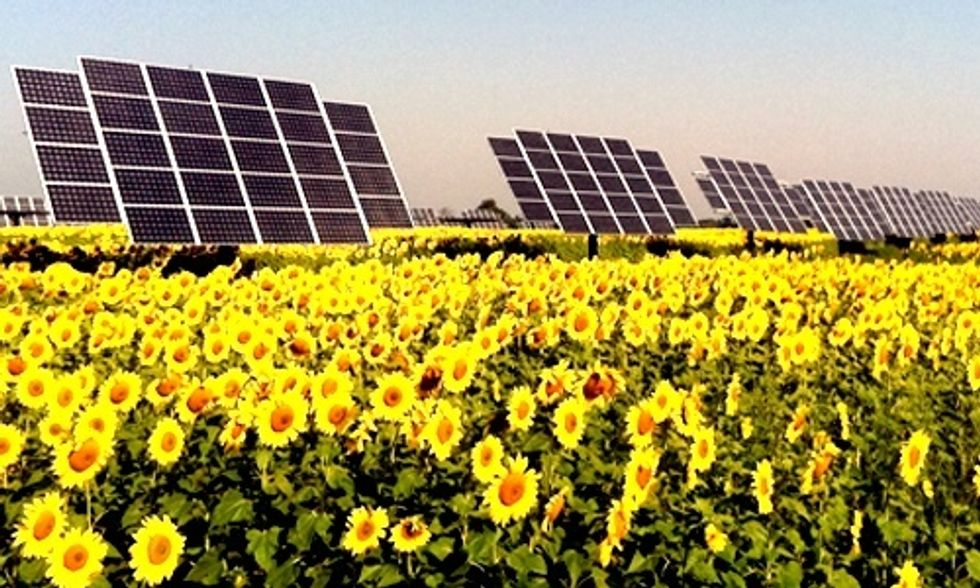 Solar Capacity in the U.S. Enough to Power 4 Million Homes