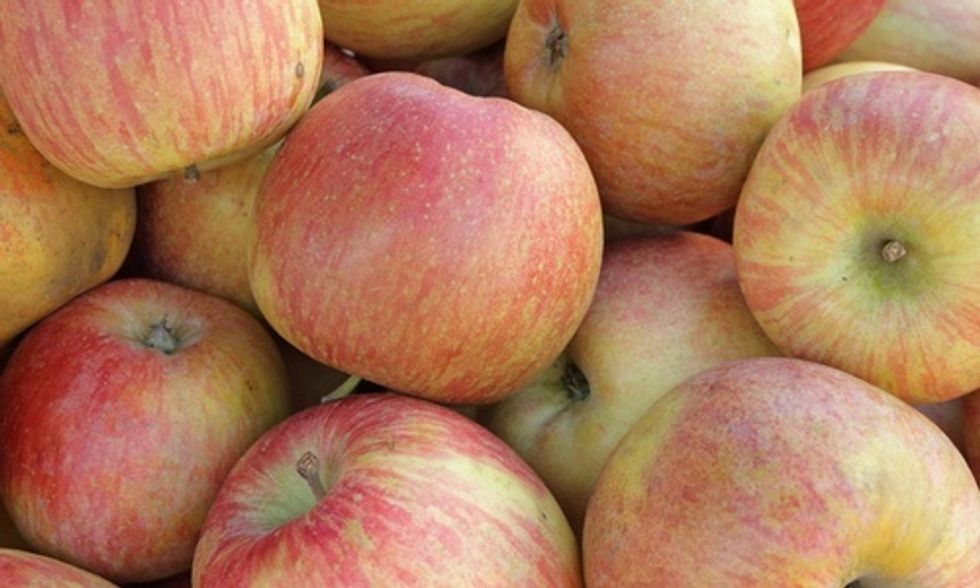 USDA Approves Apple Imports From China Despite Potential Impact on American Consumers and Growers