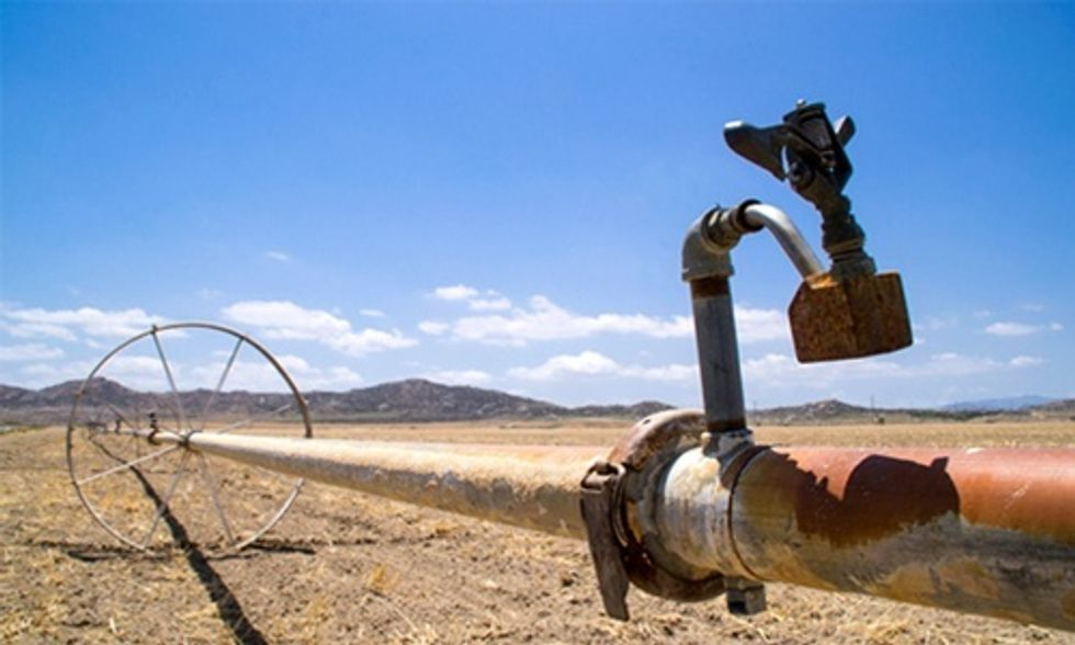 Drought-Stricken California Orders Largest Recorded Water Cuts for Farmers