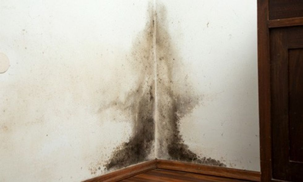 Is Your House Making You Sick?