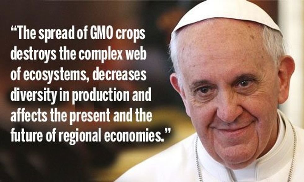 Pope Francis Slams GMOs and Pesticides for Destroying the Earth's 'Complex Web of Ecosystems'