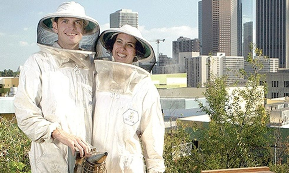 5 People Leading the Charge to Save the Honeybees