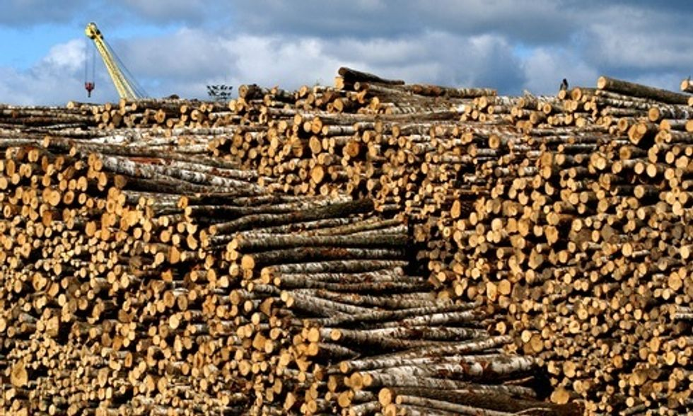 Why Would 46 Senators Support Burning Trees for Electricity When It Contributes More to Climate Change Than Coal?