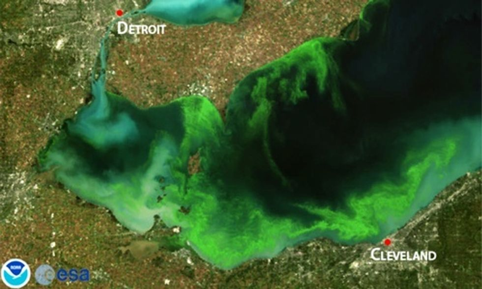 Harmful Algal Blooms Predicted for Lake Erie, Says NOAA