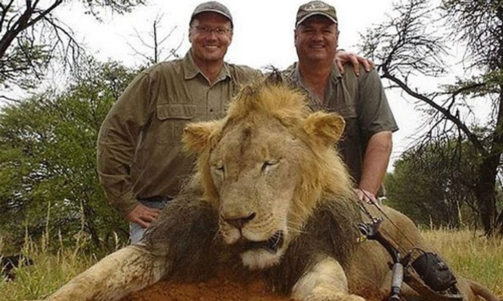 Dentist Pays $50,000 to Kill Cecil the African Lion, Sparks Internet Outrage