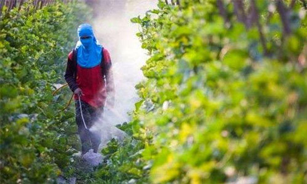 5 GMO Myths Debunked by Vandana Shiva
