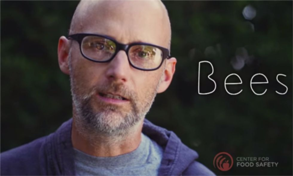 Moby Says 'Save Our Bees' From Neonicotinoids