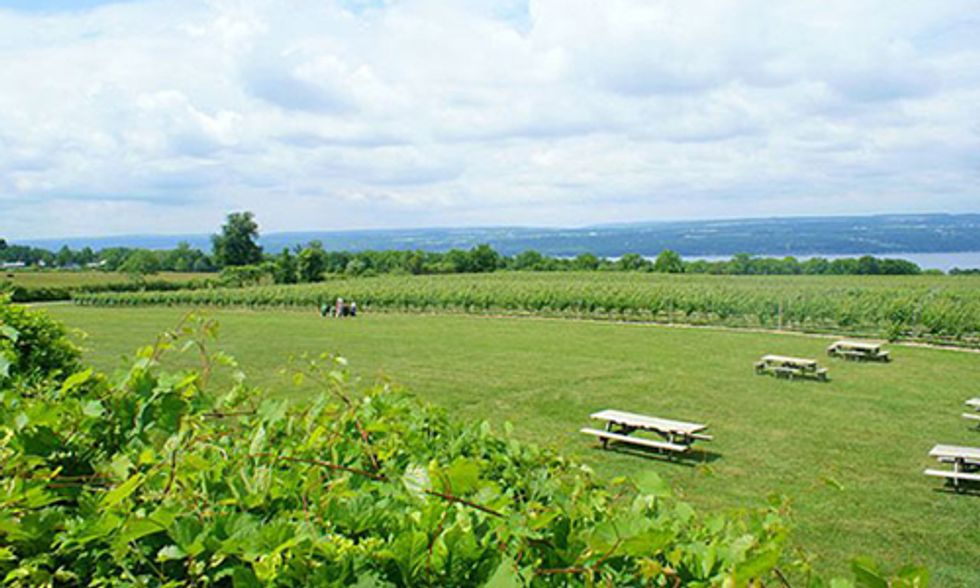 FERC Approves Methane Storage Project in Finger Lakes Region of New York