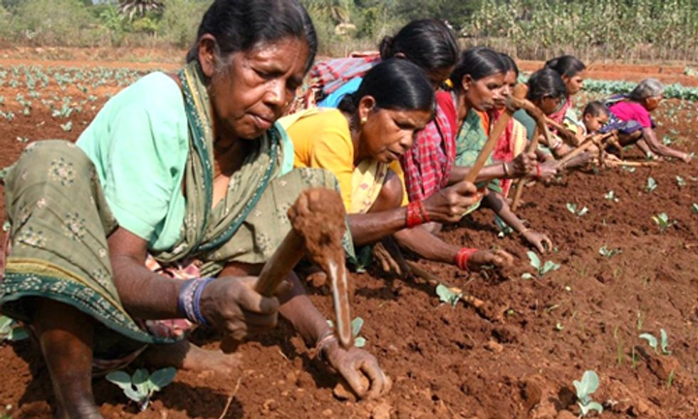 Barriers to Sustainable Farming Put Burden on World's Poor