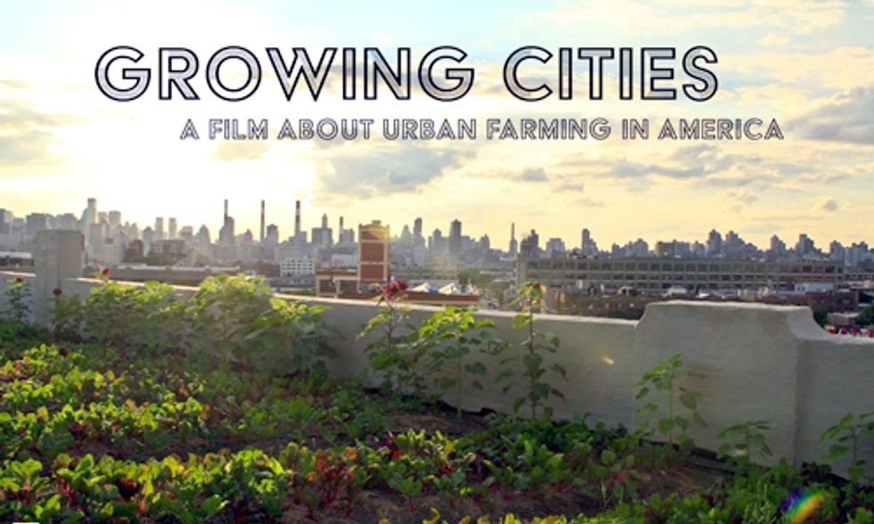 How Urban Farming Is Revitalizing America