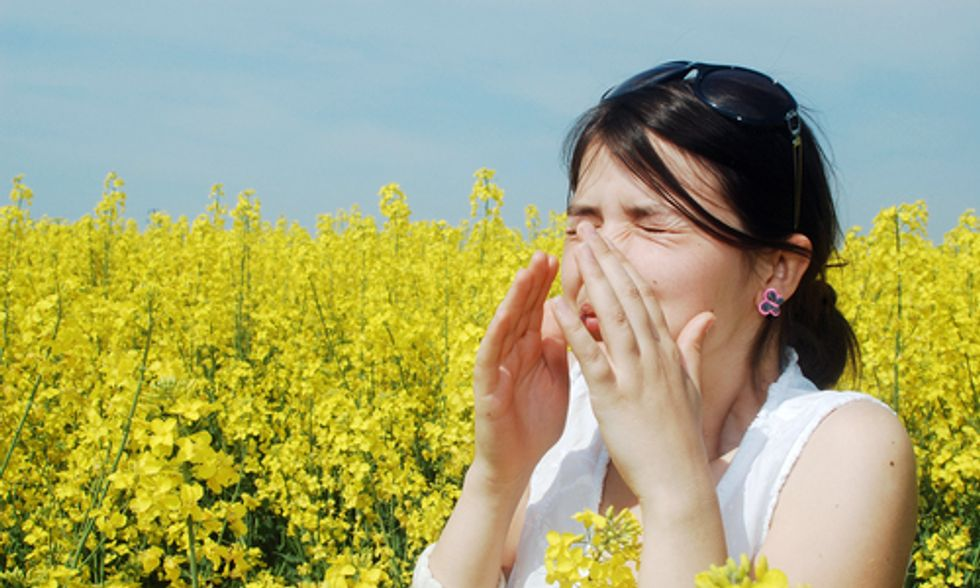 How Climate Change Could Increase Pollen Levels by 200%