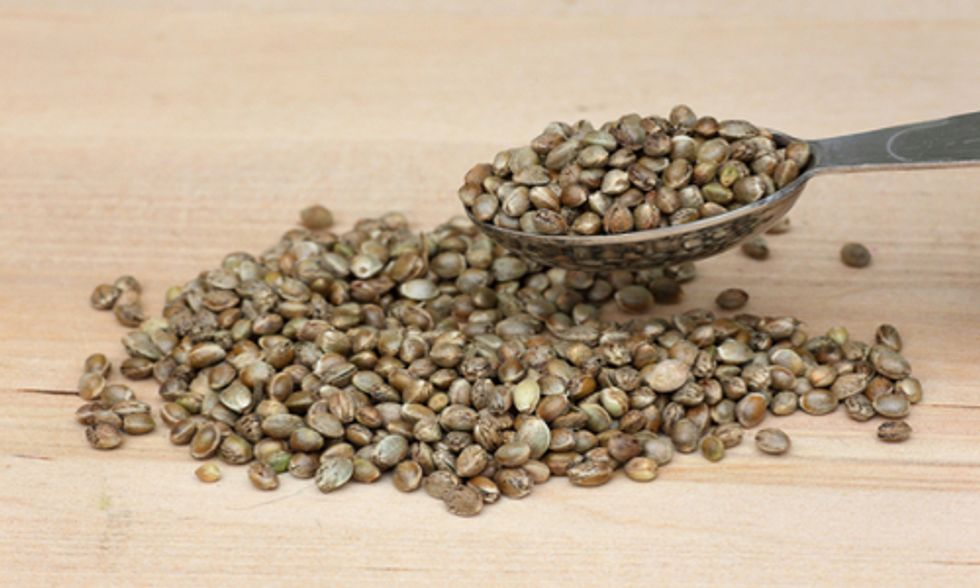 5 Great Ways to Include Hemp Seeds in Your Daily Diet