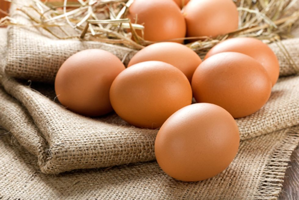 Organic vs. Conventional: Find Out Which Eggs Are Healthiest to ...