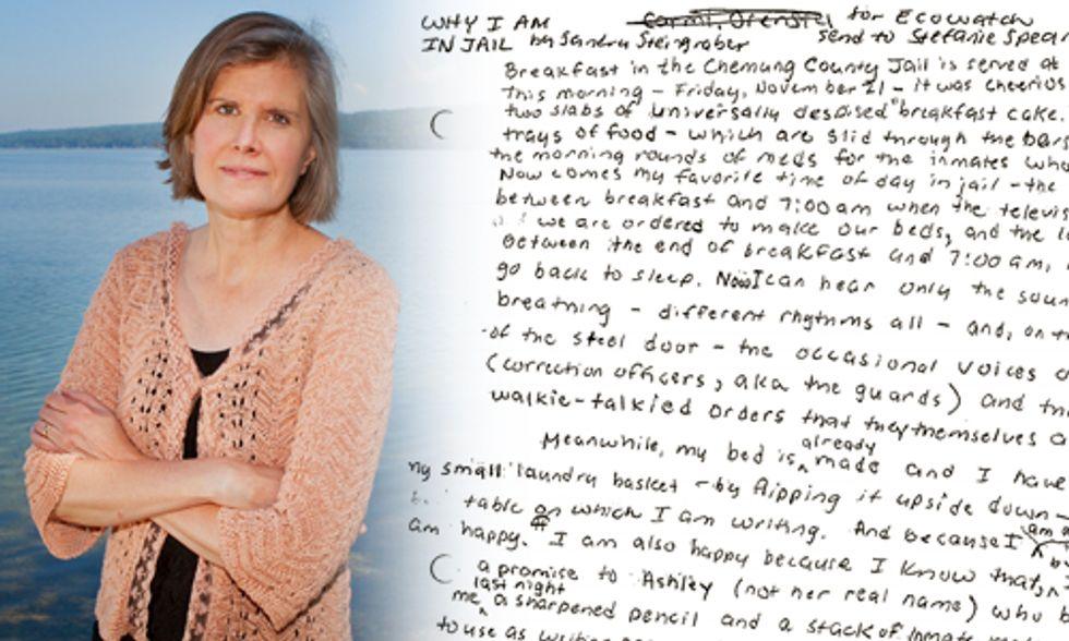 Sandra Steingraber: Why I am in Jail