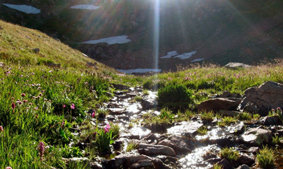 10 Reasons Why You Feel So Good in Nature
