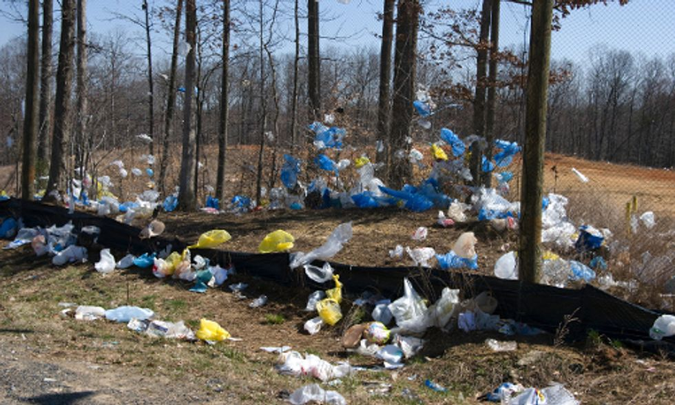 Europe Passes Historic Limits on Plastic Bags