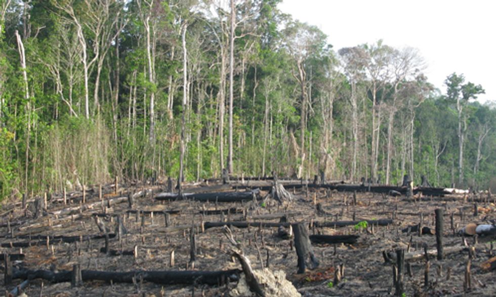 Latin Americans Pay Price for Corporate Climate Destruction