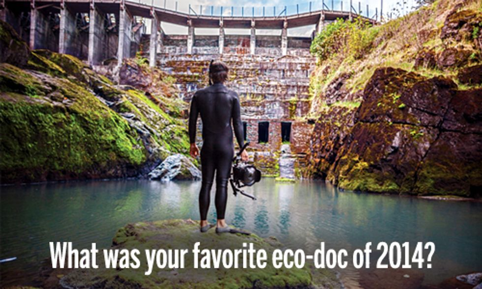 10 Best Eco-Docs of 2014