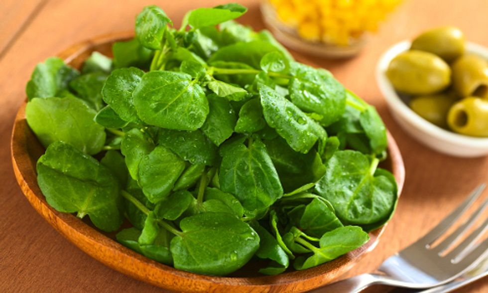 14 Superfood Salad Greens More Nutritious Than Kale