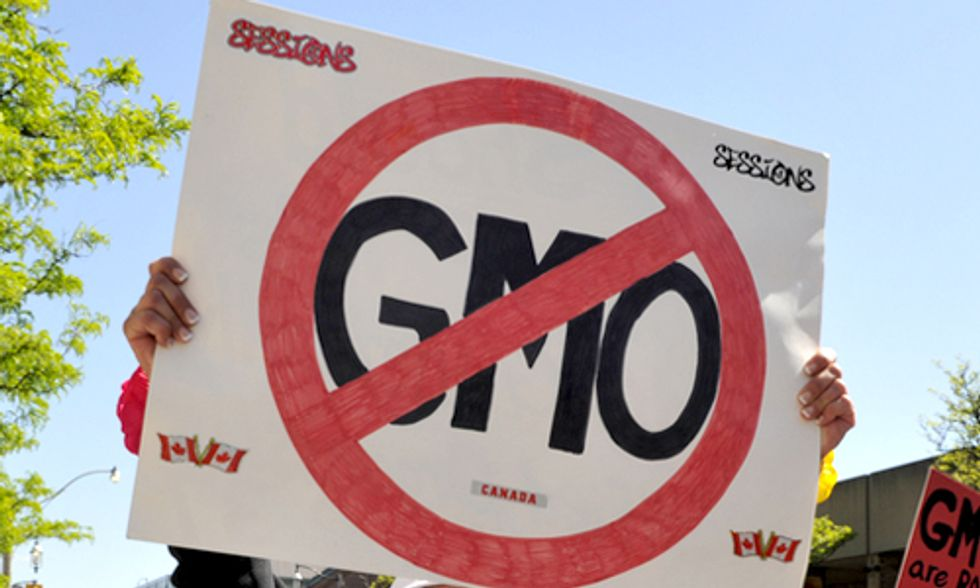 12 Ways to Rid the Planet of GMOs and Monsanto's Roundup